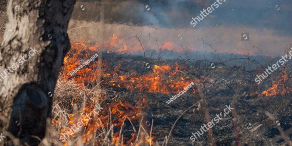 Burning Operations